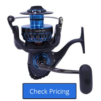 Daiwa Saltist Spinning Reel Review