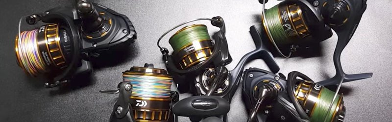 Daiwa BG SW Spinning Reel Review | Salted Angler
