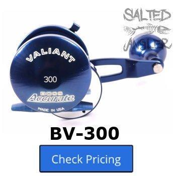 Accurate Valiant BV-300 / BV-400 / BV2-400 Review