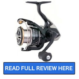 Shimano Sustain FI Spinning Reel Review | Salted Angler