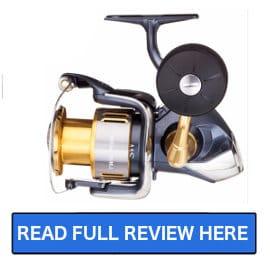 Best Shimano Fishing Reel Reviews | Salted Angler