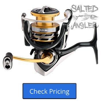 Daiwa Exceler LT Spinning Reel Review