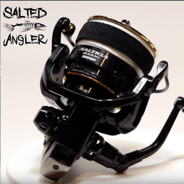 daiwa-saltiga-spinning-dogfight-bottom