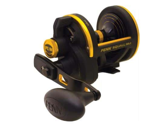 PENN Squall Lever Drag Conventional Reels | Dicks Sporting Goods