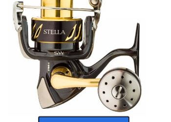 Shimano Stella SW Reel Review